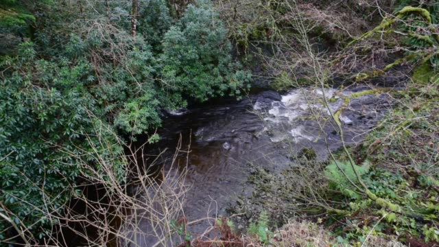 over the water of gregg, ayrshire. - david johnson stock videos & royalty-free footage