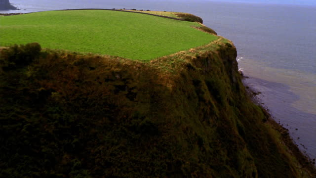 aerial over yellow field + cliff side towards sea / ireland - ireland stock videos & royalty-free footage