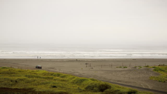 overcast daytime time lapse of the beach at ocean shores, wa, on an overcast day with cars and people walking in the background - filiz stock videos & royalty-free footage