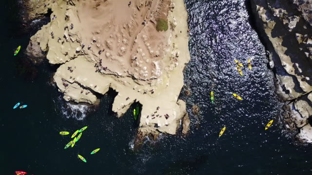 overhead aerial, kayaks off san diego coast - western usa stock videos & royalty-free footage