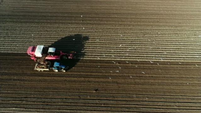 overhead aerial potato harvest, hull - hull stock videos & royalty-free footage