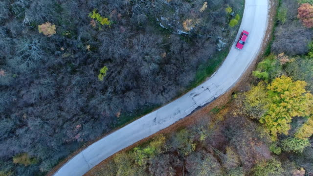 overhead aerial shoot of a red car on the road in colorful forest - yellow stock videos & royalty-free footage