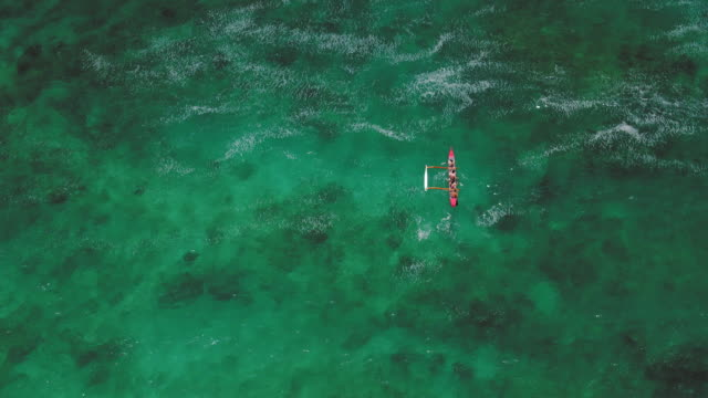 overhead aerial shot of four people in outrigger canoe - turtle bay hawaii stock videos & royalty-free footage