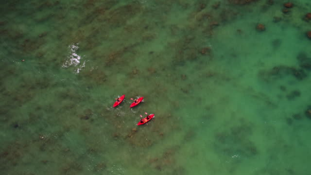 vidéos et rushes de overhead aerial shot of four people kayaking in ocean - turtle bay oahu
