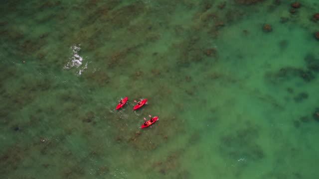 overhead aerial shot of four people kayaking in ocean - タートル湾点の映像素材/bロール