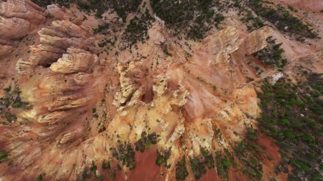 overhead drone shot gorge with a dark forest at the bottom (zion national park, utah, usa) - canyon stock-videos und b-roll-filmmaterial