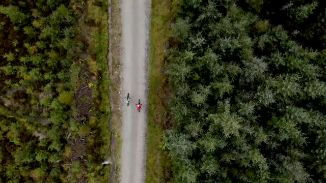 overhead drone view of two mountain bikers cycling along a forest bike trail - ultra high definition television stock videos & royalty-free footage