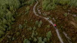 Overhead drone view of two mountain bikers cycling along a forest bike trail