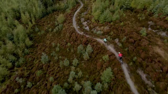 vista aerea dei droni di due mountain biker in bicicletta lungo una pista ciclabile della foresta - scoperta video stock e b–roll