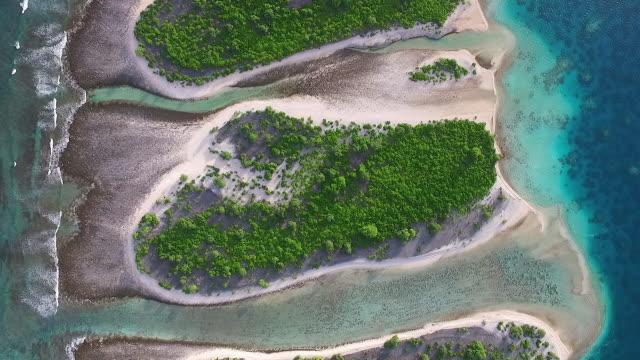 Overhead of small motus on Manra Atoll