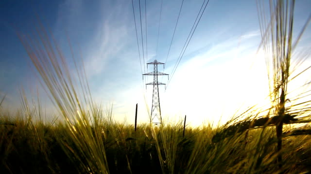 Overhead power lines in a rural field