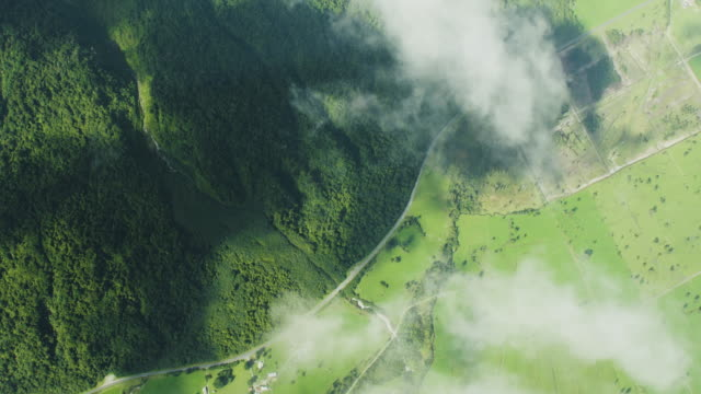 overhead shot a forest seen through the clouds - flowing stock videos & royalty-free footage