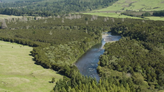 overhead shot of the tongariro river - tongariro national park stock videos & royalty-free footage