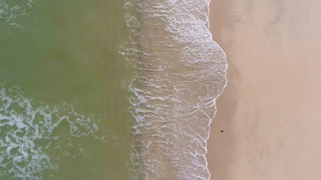 overhead schuss von tropischen meer und strand mit welle bricht in schöner tag, aerial video - klammer stock-videos und b-roll-filmmaterial