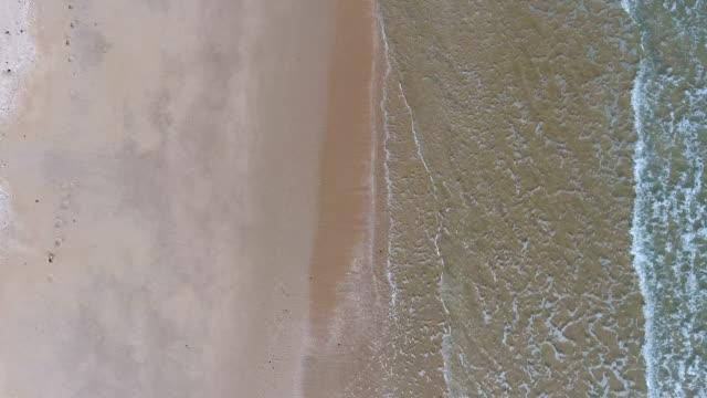 overhead schuss von tropischen meer mit wellen brechen in schöner tag, aerial video - klammer stock-videos und b-roll-filmmaterial