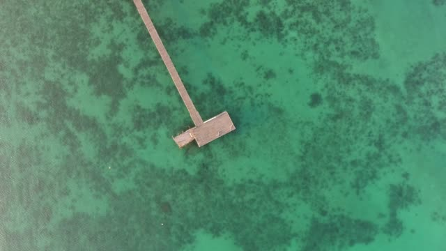 overhead shot of turquoise ocean with long wooden jetty at sunrise, aerial view - jetty stock videos & royalty-free footage