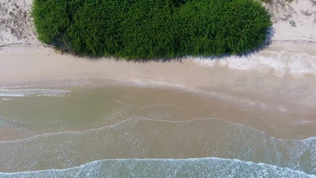 overhead schuss der welle bricht am strand, aerial video - klammer stock-videos und b-roll-filmmaterial