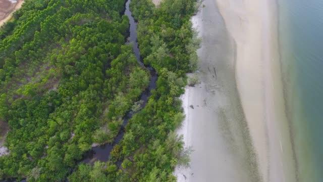 overhead schuss: tropische meer und strand mit klarem wasser und welle brechen, aerial video - klammer stock-videos und b-roll-filmmaterial