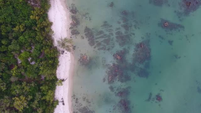 vidéos et rushes de prise de vue aérienne: tropical mer et plage aux eaux translucides et vague de la rupture, vidéo aérienne - pince à papier