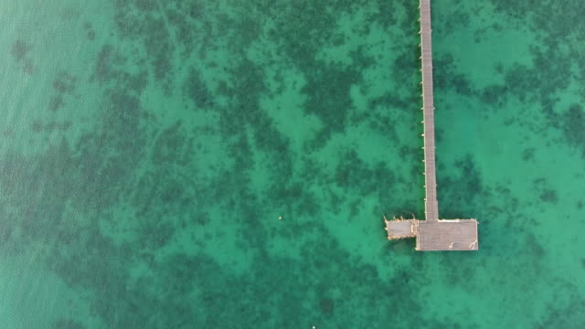 overhead view of beautiful ocean with long wooden jetty at sunrise, aerial view - jetty stock videos & royalty-free footage