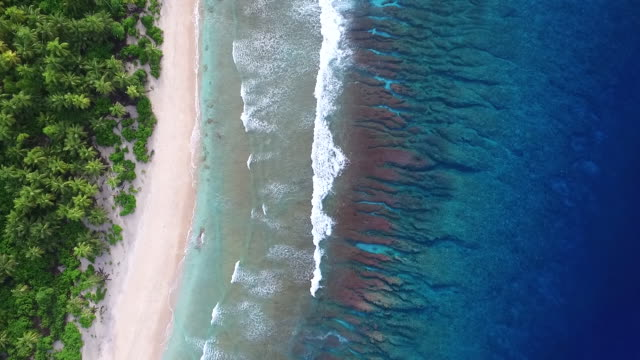 overhead view of gentle waves breaking on pacific atoll - 40 sekunden oder länger stock-videos und b-roll-filmmaterial