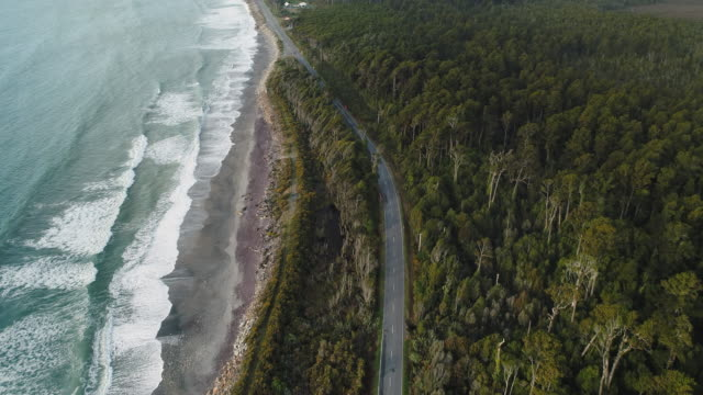 vídeos de stock e filmes b-roll de overhead view of road cutting through native forest and sea. - nova zelândia