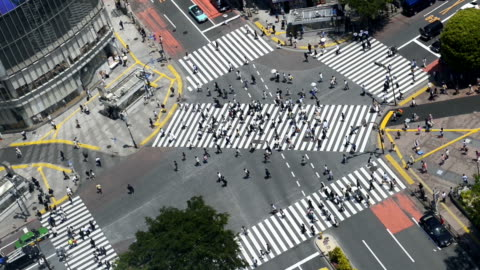 overhead view of shibuya crossing in tokyo - shibuya ward stock videos & royalty-free footage