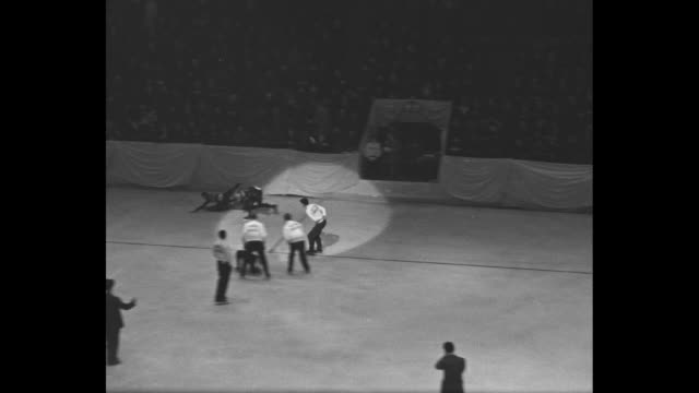 Overhead view of skaters racing around skating rink / winning skater Johnny Houkema skate past camera / man gives Houkema trophy /Junior male skaters...
