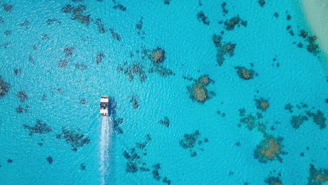 stockvideo's en b-roll-footage met overhead view of tourist boat navigating through pacific lagoon - stille zuidzee