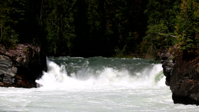 overlander falls fraser river - rocky mountains north america stock videos & royalty-free footage