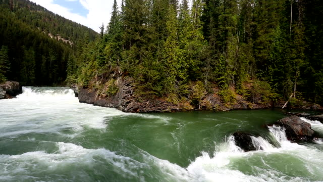 overlander falls fraser river - wilderness stock videos & royalty-free footage