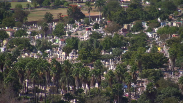 overlooking graveyard covered with white tombstones and lots of trees - grabstein stock-videos und b-roll-filmmaterial