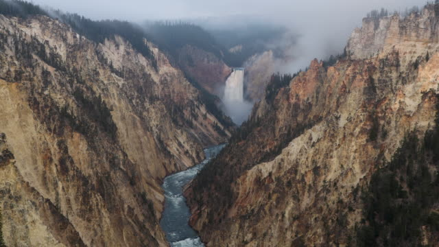 overlooking lower falls in yellowstone national park from artist point at dawn. - イエローストーン国立公園点の映像素材/bロール