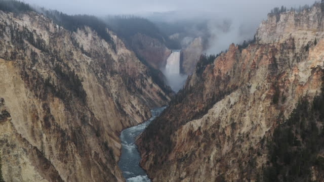overlooking lower falls in yellowstone national park from artist point at dawn. - jackson hole stock-videos und b-roll-filmmaterial