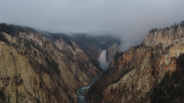 Overlooking Lower Falls in Yellowstone National Park from Artist Point at dawn.