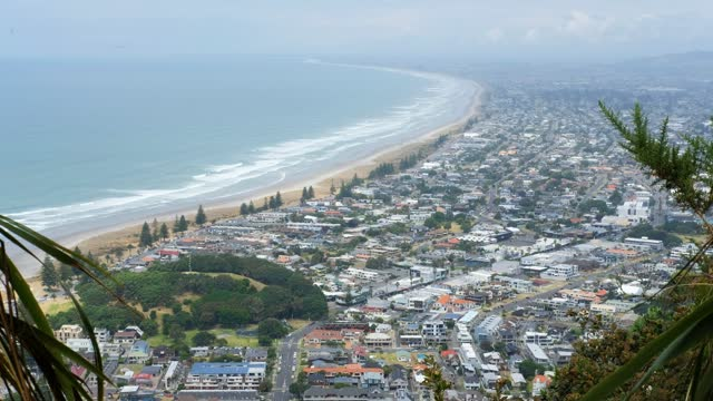 overlooking the bay of tauranga from the top of the hill - south pacific ocean stock videos & royalty-free footage