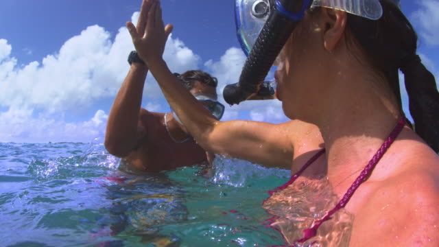 over-under shot of snorklers high-fiving before diving underwater - turtle bay hawaii stock videos and b-roll footage