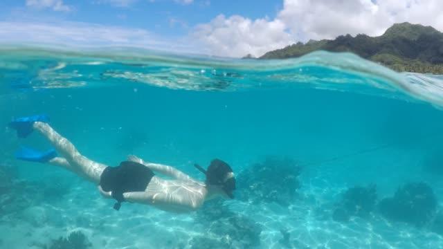 50/50 over/under view of a man swim underwater in rarotonga cook islands - rarotonga stock videos & royalty-free footage