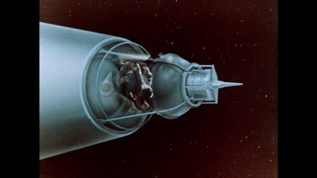 vídeos de stock, filmes e b-roll de overview of the soviet sputnik space launches - um animal