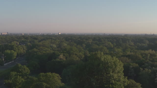 overview over city park with skyline on a morning