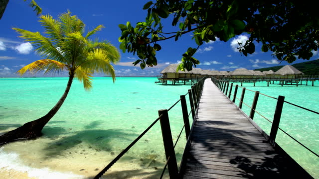 overwater boardwalk luxury bungalows aquamarine lagoon bora bora - polynesian ethnicity stock videos & royalty-free footage