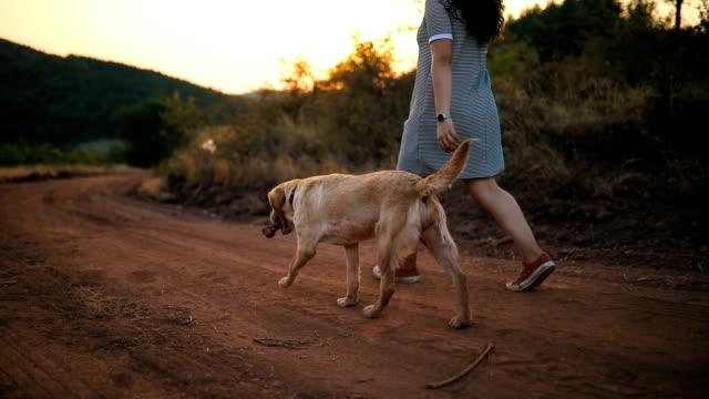 Eigentümer und Labrador Retriever Hund spazieren
