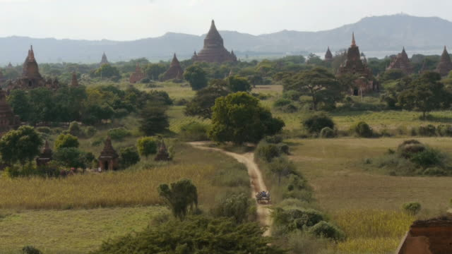 ox cart on dirt road in the plain of bagan, myanmar - ox cart stock videos & royalty-free footage