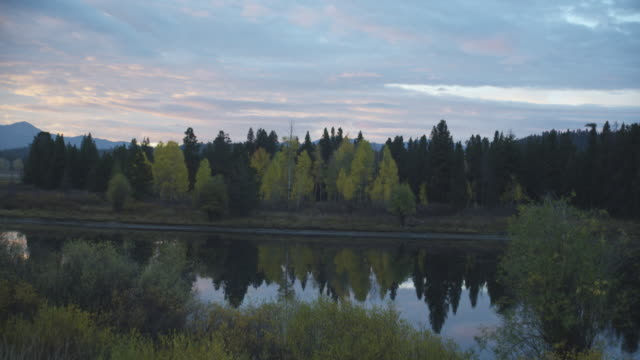 stockvideo's en b-roll-footage met oxbow bend reflects yellow and green trees in grand teton national park. - grand teton national park