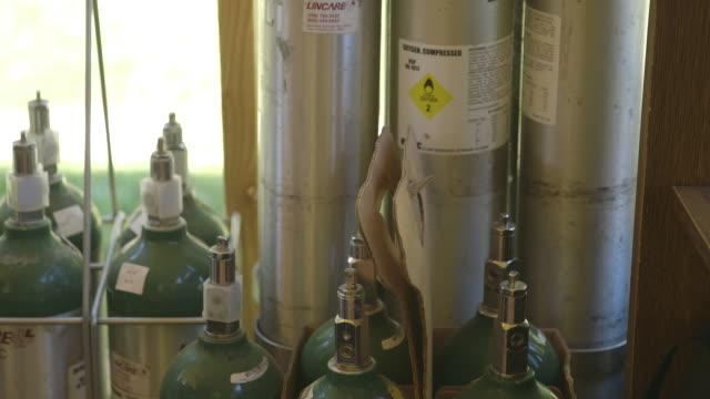 vídeos y material grabado en eventos de stock de oxygen tanks in person's home - equipo respiratorio