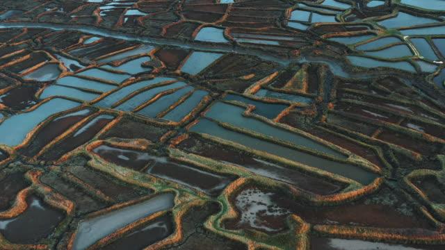 vidéos et rushes de oyster farms in the marshlands filmed by drone, la tremblade, france - changer de forme
