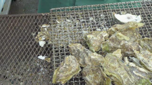 vídeos de stock, filmes e b-roll de oyster in asia - bbq sauce