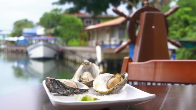 oyster plate in a table with a view to the river, brazil - mollusk stock videos & royalty-free footage
