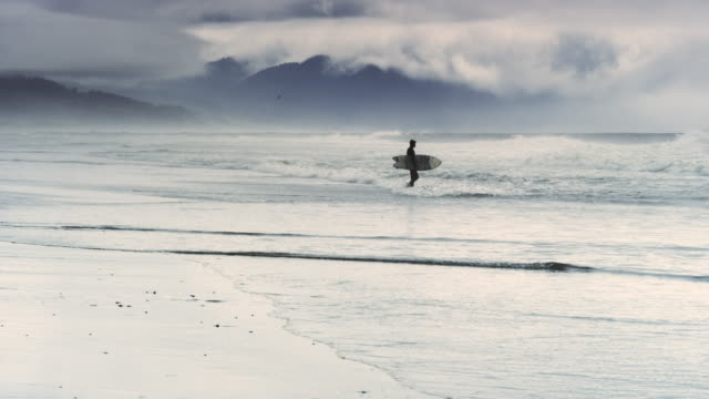 Pacific City State Park beach Oregon with surfer and storm 5