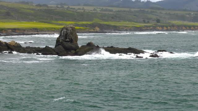 pacific coast - pacific coast stock videos & royalty-free footage